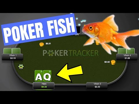 How to play against a poker fish (do's and don'ts)