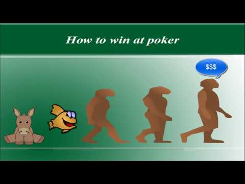3 steps to winning at poker - the making of a professional