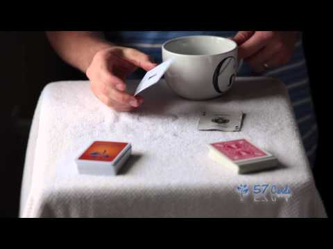 Plastic deck of cards to play rook | 57 cards